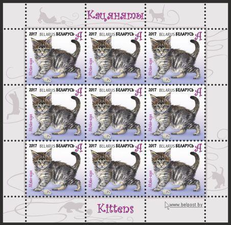 Беларусь - Кошки - 2017. Чистые четыре (4) ЛИСТА из 9 марок каждого номинала.MNH.