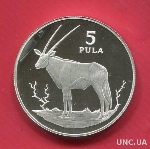 Ботсвана 5 пула 1978 ПРУФ серебро Антилопа