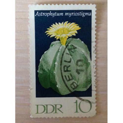Марка. Астрофитум тысячекрапинковый. 1970.