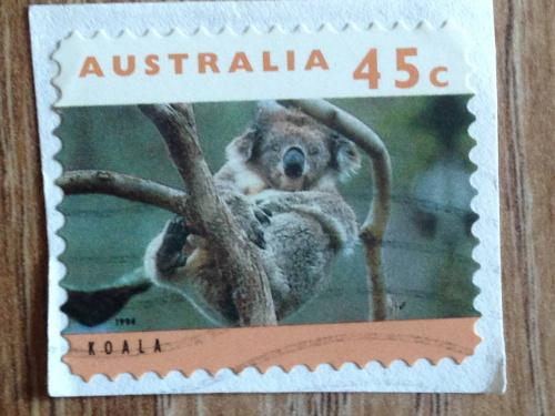 Марка. Австралия. На бумаге. Коала.
