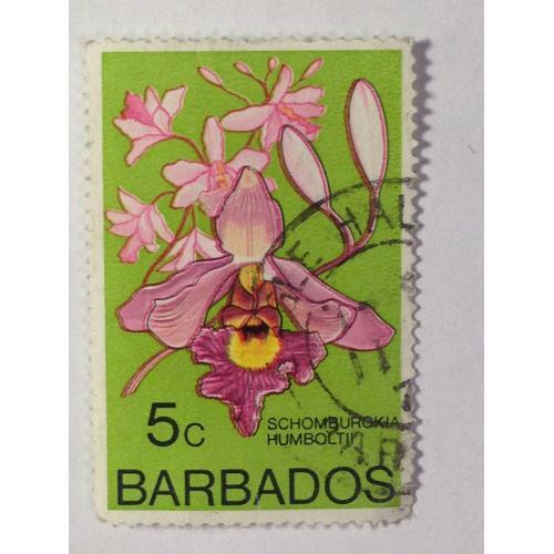 Марка. Барбадос. 5 с. ᴖ