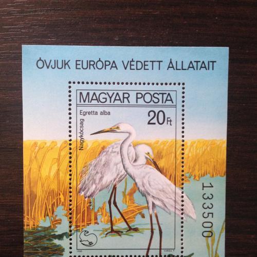 Марка блок. Венгрия. Цапли.  1980
