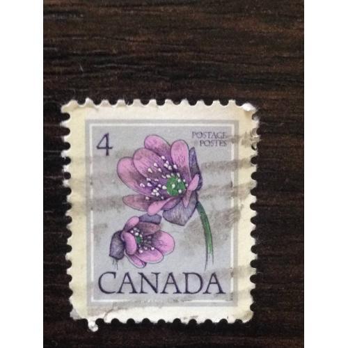 Марка. Канада. Цветок. '