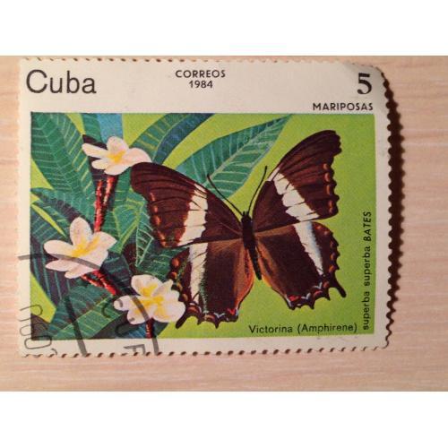 Марка. Куба. Бабочка. 1984.