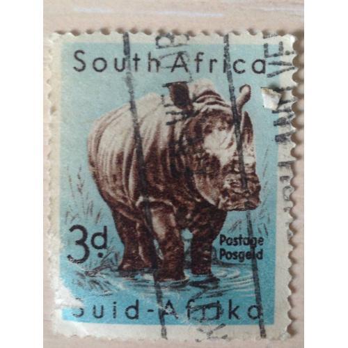 Марка. ЮАР. Носорог.