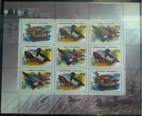 Марка почтовая Россия 1994 Утки 2 МЛ