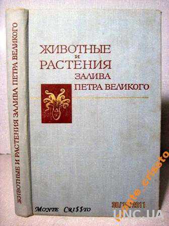 Животные и растения залива Петра Великого (редкая)
