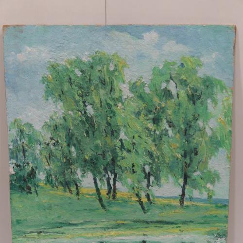 Картина летний пейзаж отражение в воде. масло, двп 51,5х34 см №122