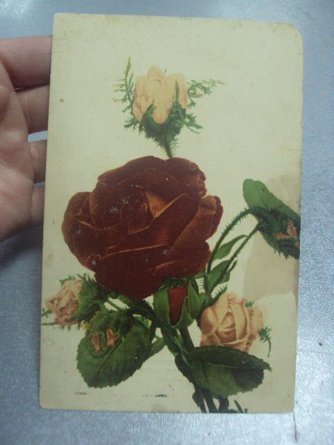 открытка букет роз саратов 1912 №1622