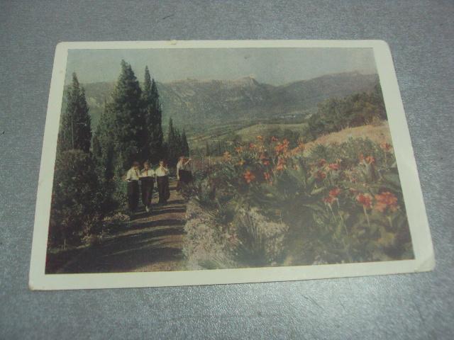 открытка крым артек №847