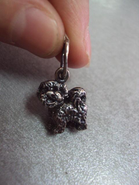 подвеска кулон собака собачка серебро 4,84 г 925