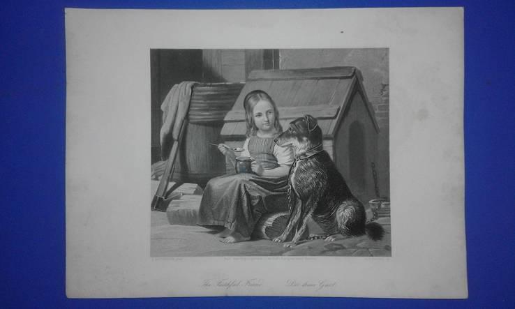 Старинная гравюра 19 века. Немецкий гравер А.Пейн. Оригинал