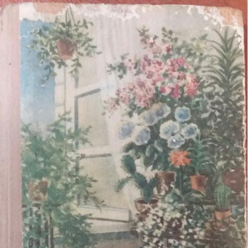 Книга 1955 года. Комнатное цветоводство. Д. Ф. Юхимчук
