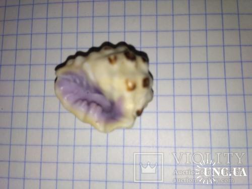 Морская раковина Мурекс Thais alouina