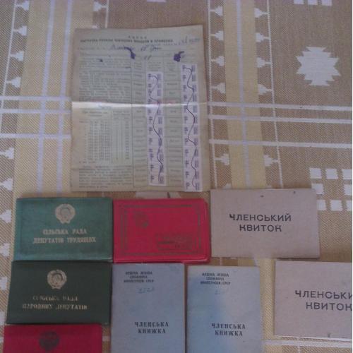 Комплект документов на Депутата Сельской рады Требухова