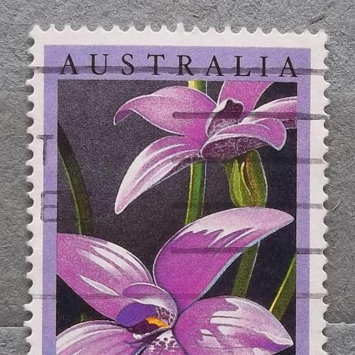 Австралия 1986 г - орхидея