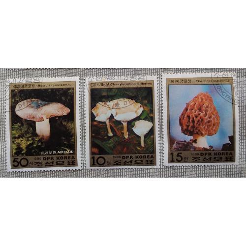 Северная Корея 1986 г - грибы