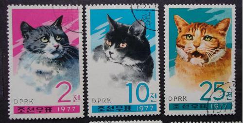 Северная Корея1977 г - домашние кошки