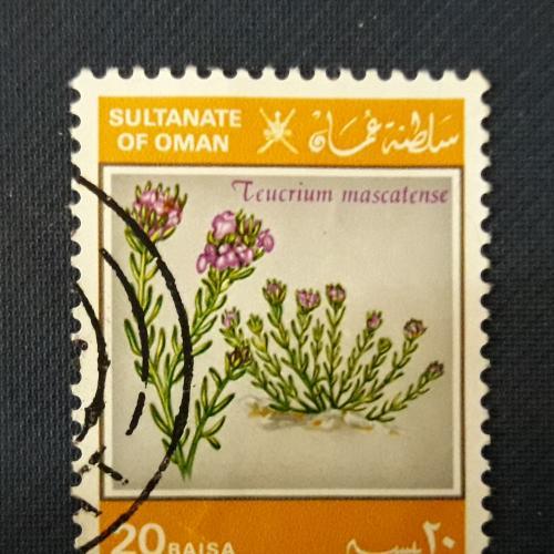 Оман Султанат Флора 20 байса Цветок