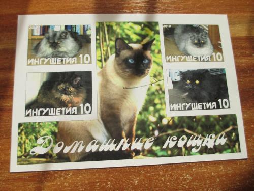 Марка Ингушетия Домашние Кошки