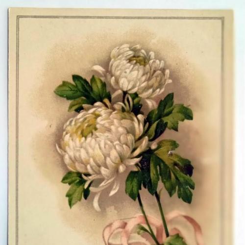 Поштова карточка листівка открытка З Днем народження поч. ХХ ст. Germany Yu35