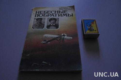 КНИГА НЕБЕСНЫЕ ПОБРАТИМЫ 1983Г. САМОЛЕТЫ