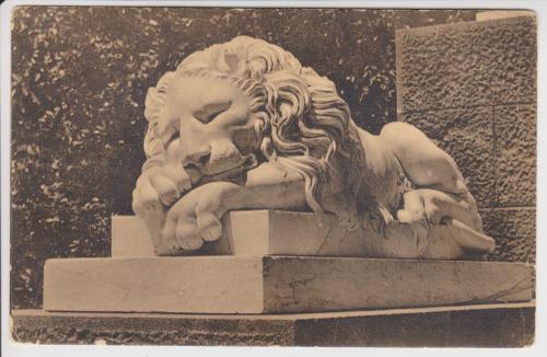 Крым. Алупка. Спящий лев на террасе дворца.