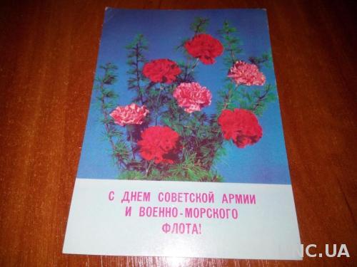 С Днем Советской Армии и ВМФ!