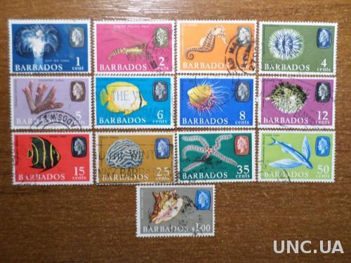 Барбадос фауна рыба КЦ-11евро