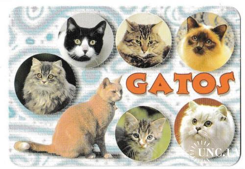 Календарик 2003 Кошки, Испания