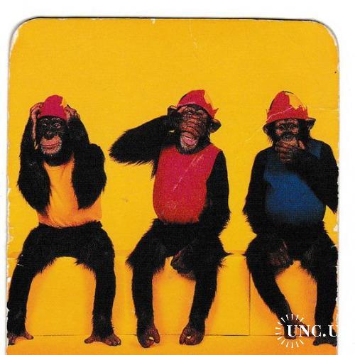 Календарик 2004 Гороскоп, Рыбы, обезьяны