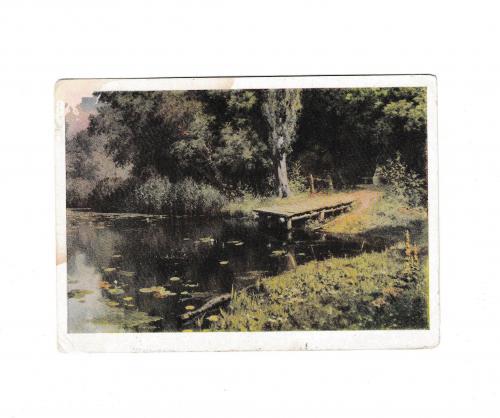 Открытка 1965 Живопись, искусство, Заросший пруд, худ. Поленов