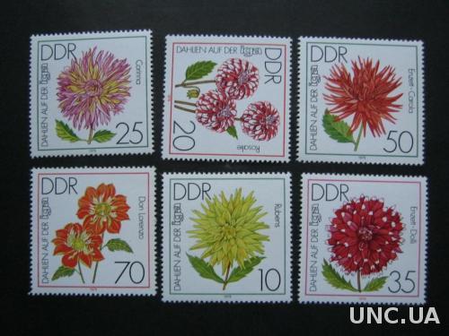 флора цветы ГДР Т