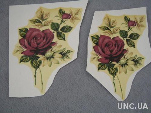 переводные картинки флора розы