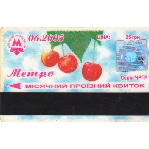 билет проездной Киев пластик 2005-24