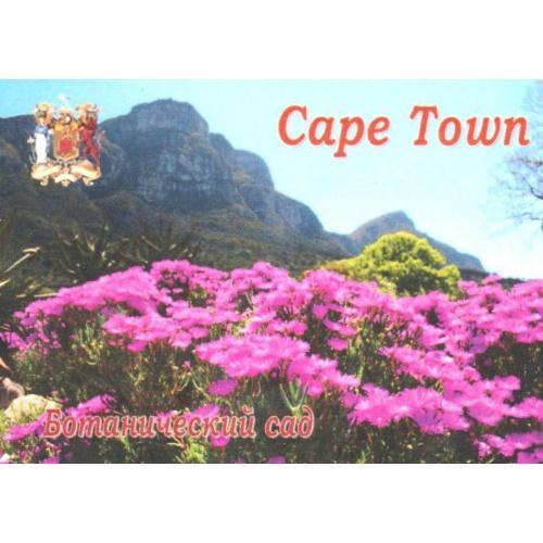 магнит сувенирный Кейптаун-3