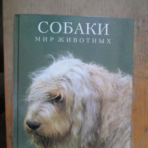 Собаки. Мир животных.