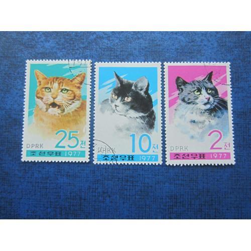 3 марки Северная Корея КНДР 1977 фауна кошки коты гаш