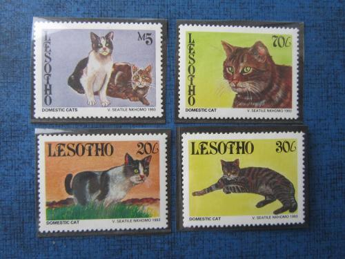 4 марки Лесото 1993 фауна коты кошки MNH