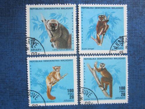 4 марки Мадагаскар 1990 фауна лемуры гаш