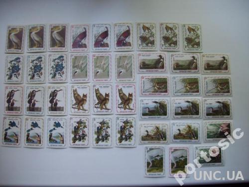 42 марки Гаити птицы