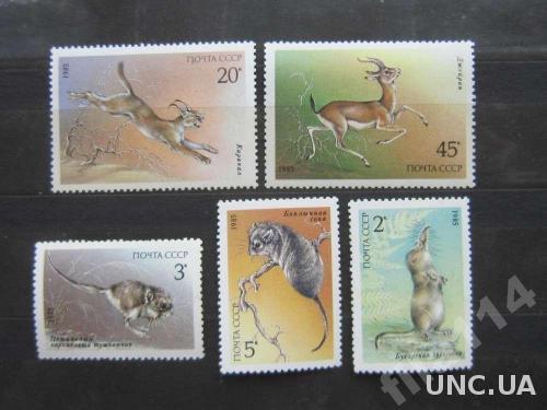 5 марок СССР 1985 фауна MNH