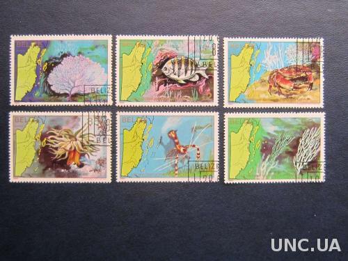 6 марок Белиз 1982 морская фауна