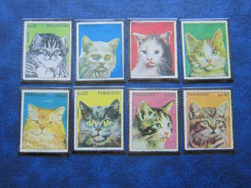 8 марок Парагвай фауна коты кошки MNH