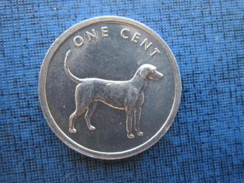 Монета 1 цент Остова Кука 2003 фауна собака UNC