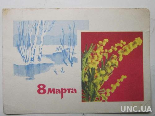 Открытка 8 Марта! Мимоза Дергилев 1967