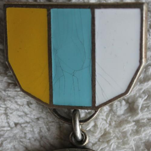 Медаль Фонд Зеева Жаботинского Иудаика Евреи Украина Award Medal Zeev Zhabotinsky Fund Judaica