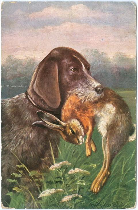Охота Изд. Н.К.М. 1909 год Заяц Собака