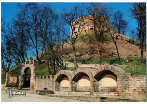 Центральний вхід в Теребвлянський замок!
