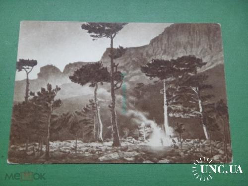 1921 год. Крым. Ночь в горах.
